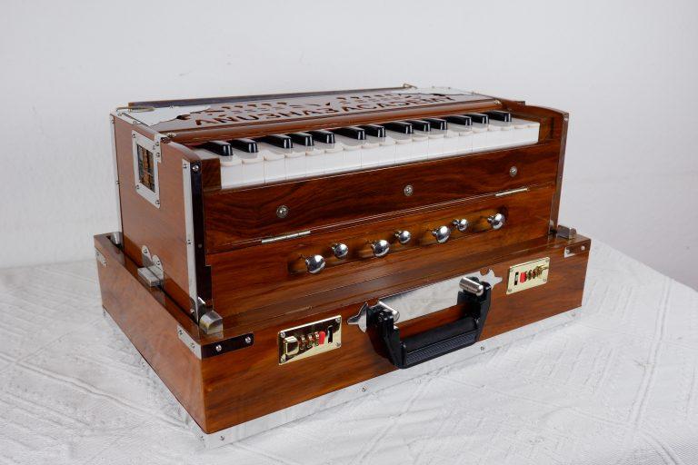 Harmonium klein Anubhab Academy (2)