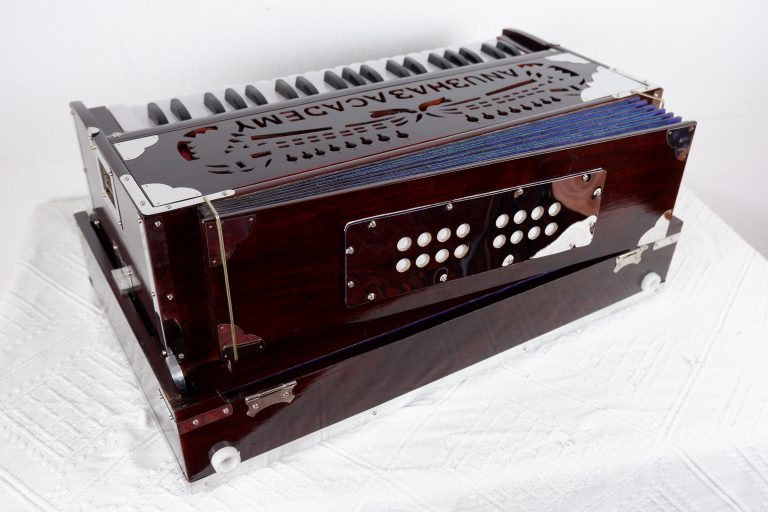 Harmonium mittel Anubhab Academy (11)