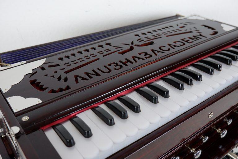 Harmonium mittel Anubhab Academy (9)